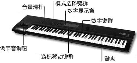 2)多键盘立式电子琴: 多键盘的立式电子琴不仅有两